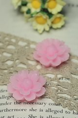 """FREE SHIPPING - Beautiful Resin Cabochon - HD300 (2.6cm or 1"""")"""