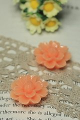 "FREE SHIPPING - Beautiful Resin Cabochon - HD300 (2.6cm or 1DIY Resin Cabochon"")"""