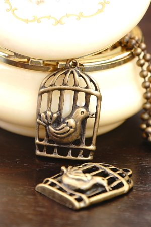 Photo1: SALE-Antique Style Bronze Charms - Bird Cage