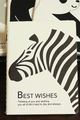new Lovely Paper Line Note Book - Little Zebra