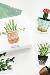 Lovely Paper Label Sticker Box -  Cactus
