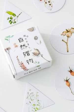 Photo1: Lovely Planner Paper Sticker Box - Natural Gift