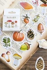 Lovely Planner Paper Label Sticker Box - Forest Story