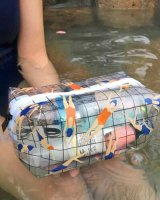 cute Transparent PVC Cosmetic Bag - swimming