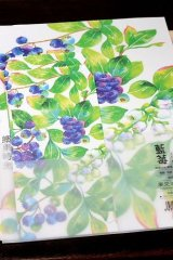 Kawaii Letter Set - Blue Berry