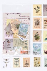Kawaii Planner Bujo Journal Seal Sticker Sack - Stamp Museum - insect book