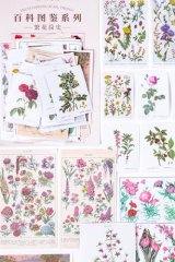 Kawaii Japanese Washi Paper Planner Supplies Sticker Sack - Encyclopedia Plant - Flower