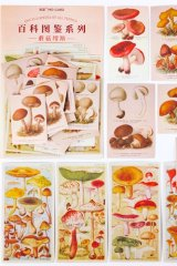 Kawaii Japanese Washi Paper Planner Supplies Sticker Sack - Encyclopedia Plant - Mushroom