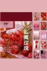 Instagram Style Washi Paper Sticker Set Office Supplies - Rose Red