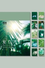 Instagram Style Washi Paper Sticker Set Office Supplies - Green Sunday