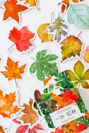 Photo1: SALE - kawaii Planner Paper Label Sticker Box - sweet afternoon - Autumn Leaves