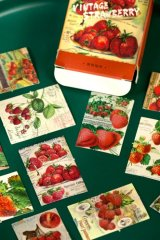 kawaii Planner Paper Label Sticker Box - Vintage Strawberry