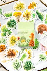 Lovely Planner Paper Label Sticker Box - Nordic Forest