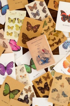 Photo1: DIY Supplies Paper Materials Pocket Book - time projection - butterfly