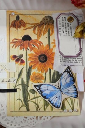 Photo2: Vintage Style DIY Supplies Paper Materials Pack - time after time - grass plants