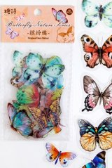 Kawaii PET Bujo Planner Sticker Sack - Natural Butterfly - colorful