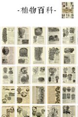 Vintage Style Japanese Washi Paper Planner Sticker Book - old things - plant