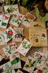 Lovely Planner Paper Label Sticker Box - Forest Code