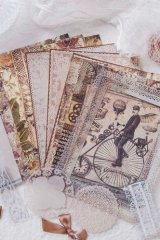 DIY Craft Decor Planner Paper Materials Pack - Lace waltz - swan lake